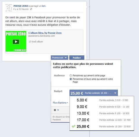 Publication payantes sur facebook